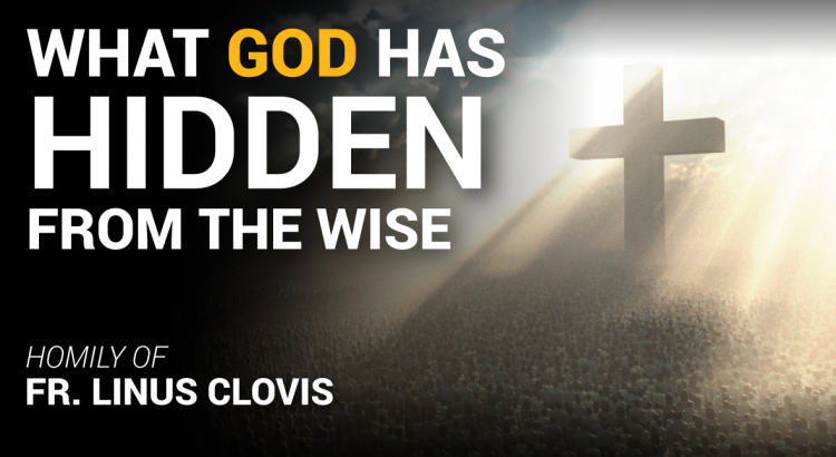 What God has hidden from the wise ~ Fr. Linus Clovis